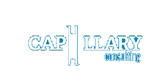 Capillary Consulting - Change Navigation